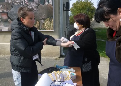 "Museum Staff Training ""protection of museum collections in emergency situations"""