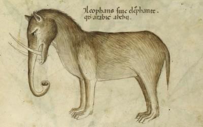 სპილო შუა საუკუნეების ევროპელი მხატვრების წარმოსახვაში