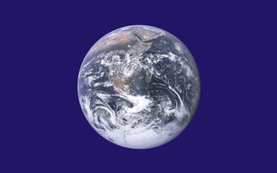 დედამიწის დღე 2016: ხეები დედამიწისთვის