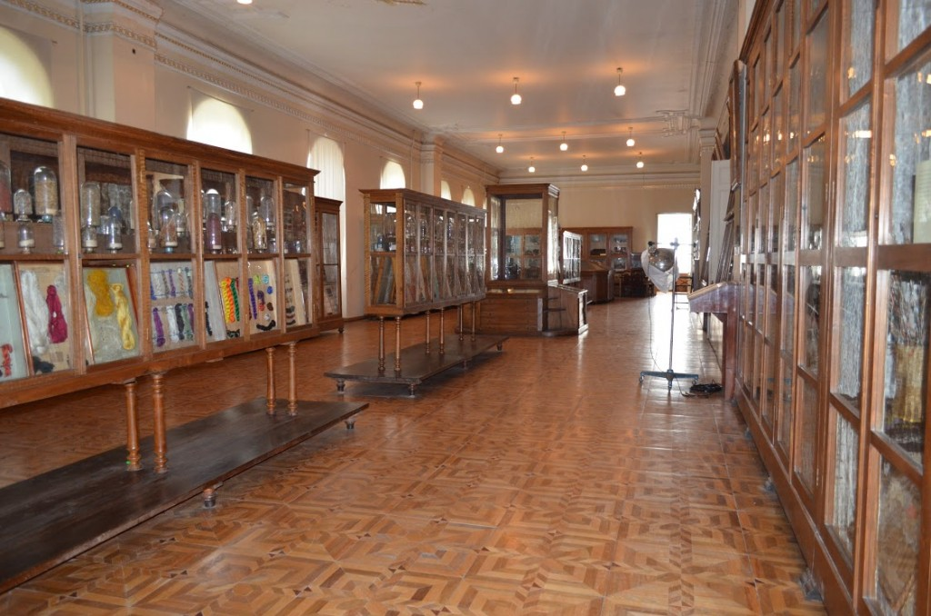 Readiness for Emergency Situations at Georgian Museums, State Archives and Libraries