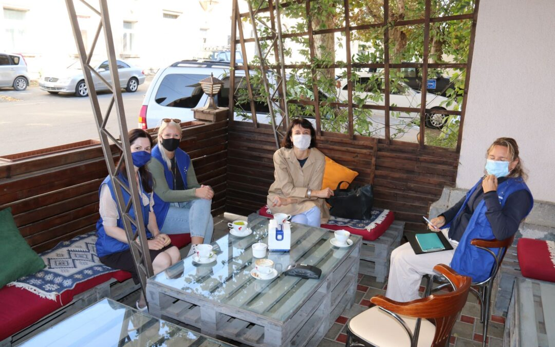 საქართველოს ლურჯი ფარის შეხვედრა ევროკავშირის სადამკვირვებლო მისიასთან