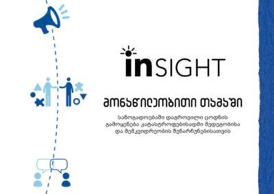 InSight _ მონაწილეობითი თამაში